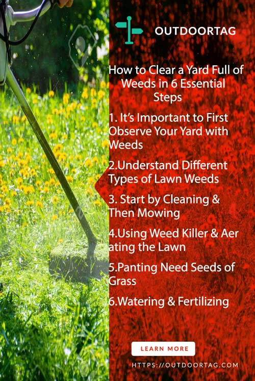 How to Clear a Yard Full of Weeds