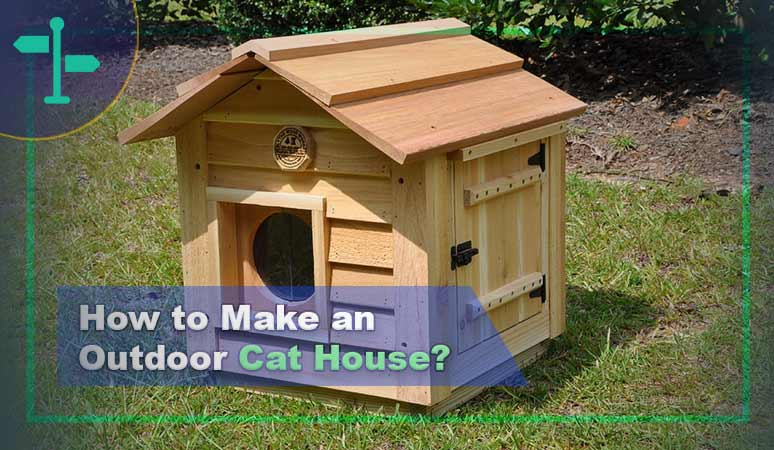 How to Make an Outdoor Cat House – 7 Ideas Not to Miss 1