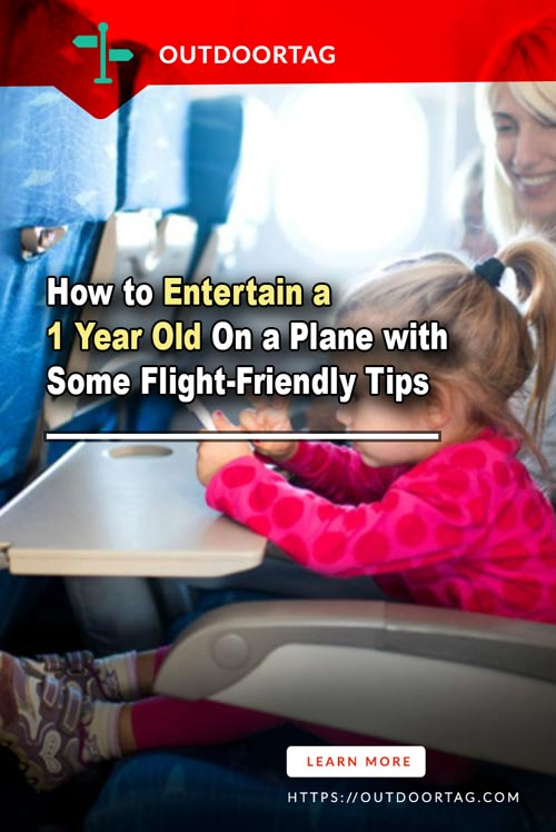 How to Entertain a 1 Year Old On a Plane with Some Flight-Friendly Tips.