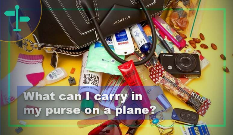 What Can I Carry in My Purse on a Plane