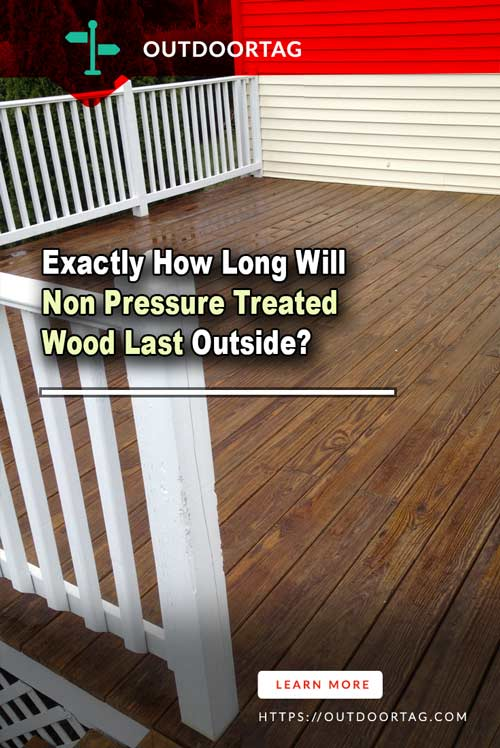 Exactly How Long Will Non Pressure Treated Wood Last Outside?