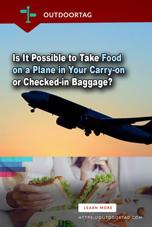 Is It Possible to Take Food on a Plane in Your Carry-on or Checked-in Baggage?